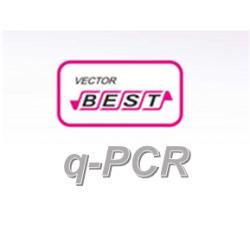RealBest DNA Candida albicans (Set 2 / RG)