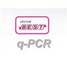 RealBest DNA Mycoplasma hominis / Mycoplasma genitalium (Set 2 / RG)