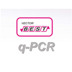 RealBest DNA Ureaplasma urealyticum / Ureaplasma parvum (Set 2 / RG)